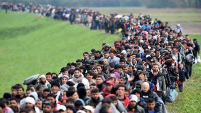 Inmigración - Desplazados