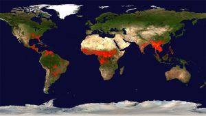 Mapa de los incendios forestales en el mundo - Data Urgente - Agencias