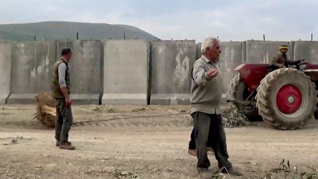 Oliva - Siria - España - Turquía - Fuente foto web - Data Urgente